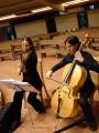 Servicios creativos de artes integradas. montajes teatrales-musicales. artistas