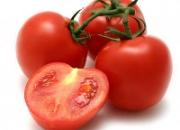 Semillas certificadas de tomate
