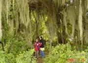 vendo finca villa de leyva  Colombia