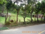 vendo hermosa parcela en la via San Gil - Barichara...