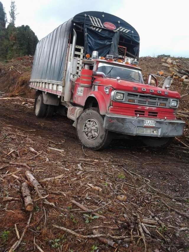 Fotos de Camion de estacas se vende con motovendo camion disel  motor dt 468 caja 910 tro 1