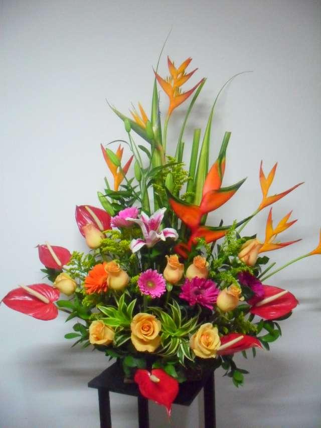 Fotos de arreglos florales para toda ocacion en Meta