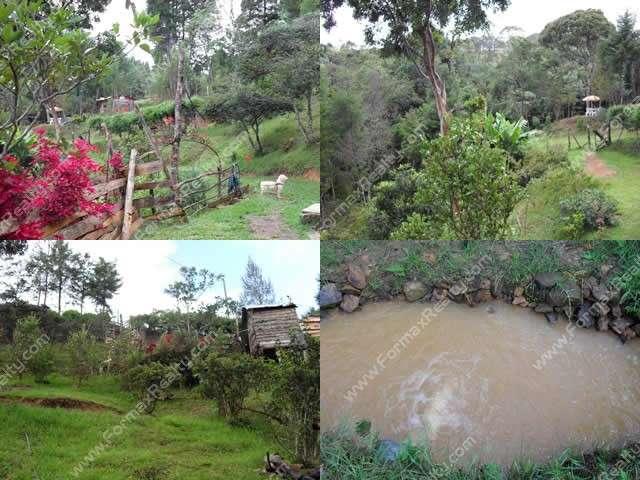 Fincas Medellin Para Venta Venta de Finca en Medellín