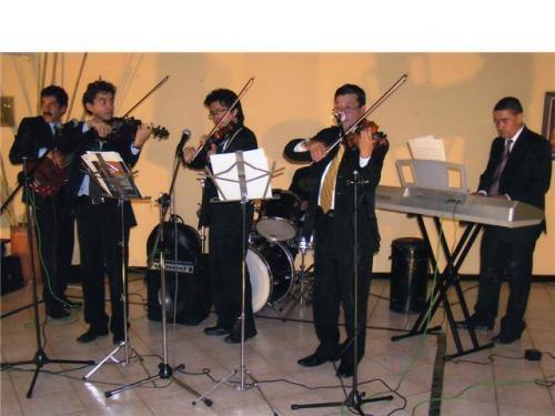 Violines selectos de marco rayo