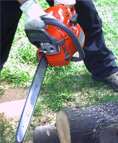 Ingenio servicios forestales www.ingeniosf.com