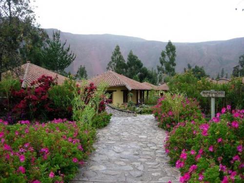 Orquideas,, anturios, florecencia.. jardines , jardineros , abonos ,prados , diseñamos su jardin , mantenimiento de jardines