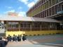 Guadua y bambú proyectos asociados