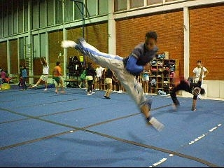 Dicto clases de tae kwon do (bogota)
