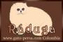 Criadero: Venta gatitos PERSAS en Bogotá