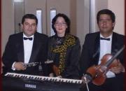 Músicos, dúos, tríos...para serenatas en bogota colombia