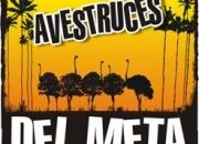 AVESTRUCES DEL META