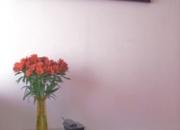 Arriendo Acogedor apartamento en ciudad Salitre/ dias/semanas/meses