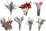Venta de plantas forestales y follaje de Eucalipto baby blue tipo Exportación