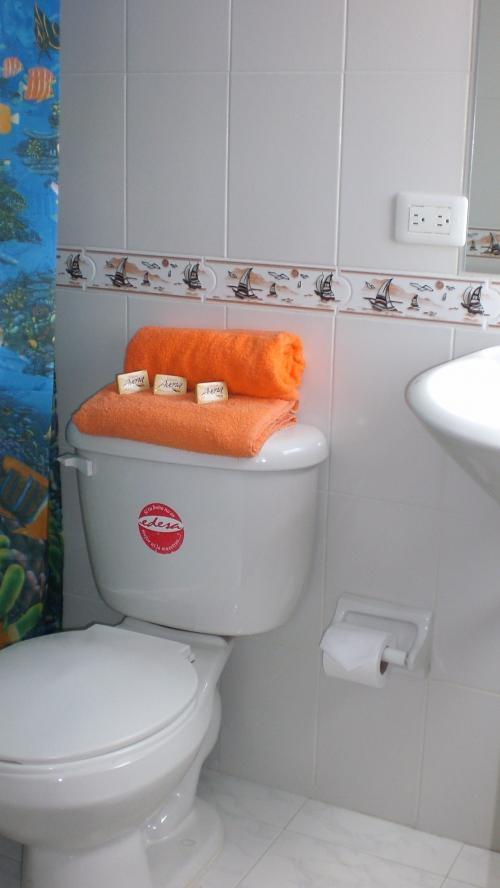 Fotos de Hotel casa paulina alojamiento economico con un servicio 5***** 3