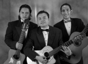 Artistas en bogota serenatas trio