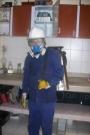 FUMIGACIONES EN BOGOTA(abatir fumigaciones)