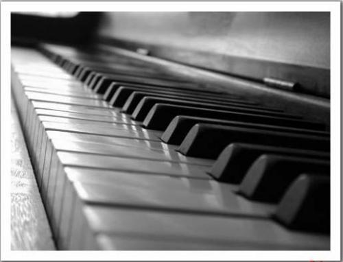 Serenata música romántica, bogota dc