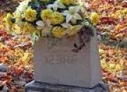 Vendo o permuto 3 lotes dobles en el cementerio
