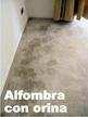 4244386 MANTENIMNIENTO  DE ALFOMBRAS, MUEBLES, CORTINAS Y ASEO GENERAL