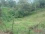 Venta Lote Vereda La Miel, Caldas (Antioquia) $192.000.000