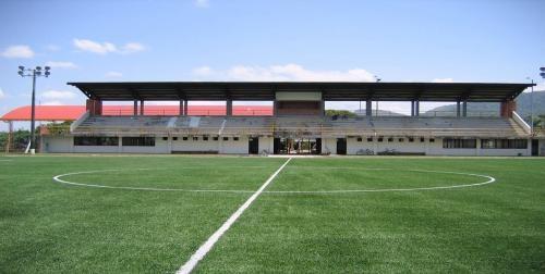 Gramas sintéticas tapisol futbol y paisajismo