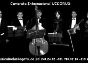 Músicos en bogotá: música para bodas y recepciones