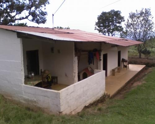 Finca cafetera - garzon - huila - 29 hectareas
