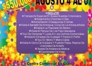 FERIA DE FLORES 2011
