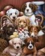 - Busco perritos en adopción vacunados y desparasitados, también recibo perros que por cosas del tiempo o espacio no puedas estar con el nosotros lo recibimos y les buscamos un Hogar una familia