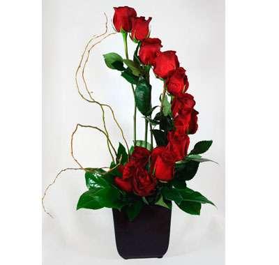 Fotos de Flores en caja - primavera floral diseño en flor 3