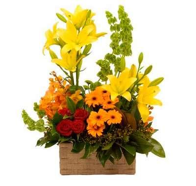 Fotos de Flores en caja - primavera floral diseño en flor 2