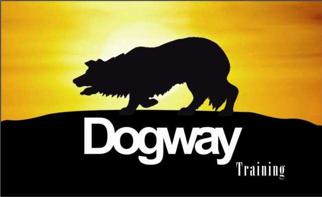 Dog way guardería colegio canino adiestramiento, agility, transporte puerta a puerta