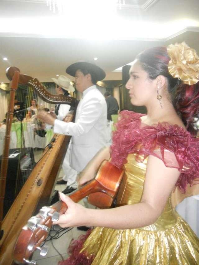Serenata grupo llanero en bogota 2094170