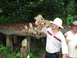 Ofertas de turismo en colombia san andres, cartagena, santa marta.....