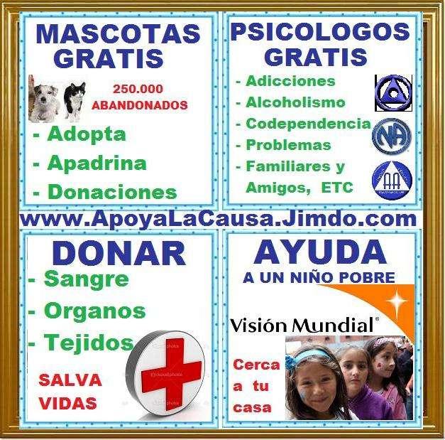 Fotos de Urgente, adopta mascotas, perros, gatos, recibimos donaciones. el refugio pasa h 3