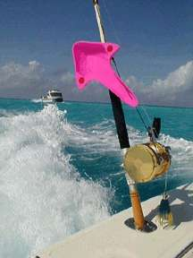 Out-rover: la mejor alternativa de los pescadores de agua salada de los estabilizadores caros