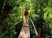 Viaja al Amazonas  y haz trekking en Selva Alta