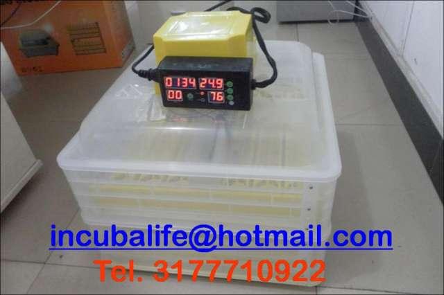 Incubadoras de importacion