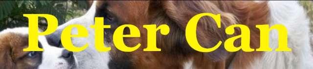 Criadero cocker schnauzer golden french mini beagle labrador gran danes