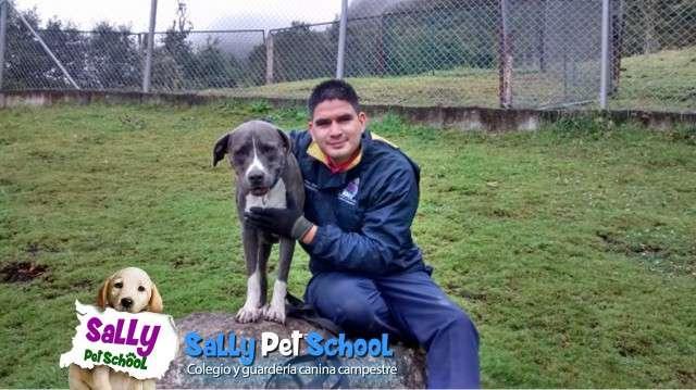 Colegio y guardería canina campestre con transporte bogota zona norte