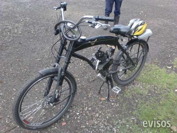 Vendo ciclo motor...