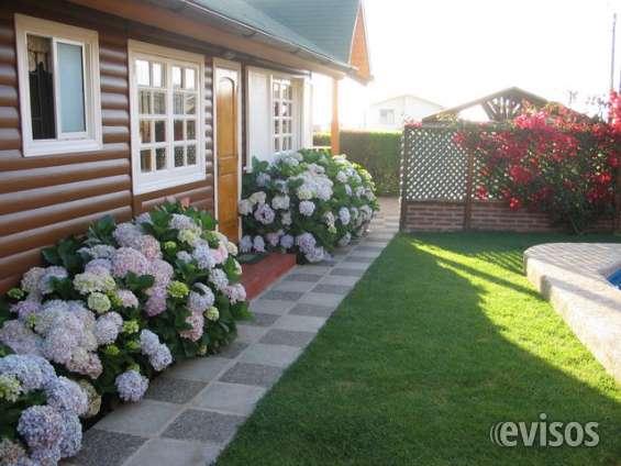 Me ofresco: cuidar casa campo o veranéo.