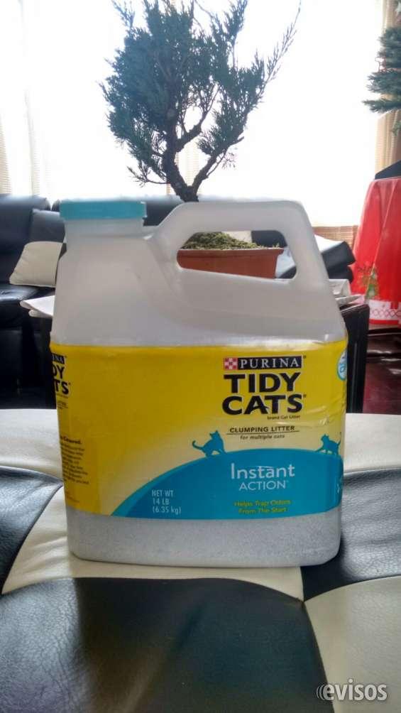 Arena para gatos tidy cats