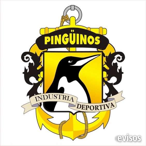 Escuela deportiva pingüinos