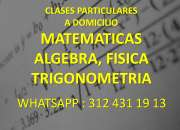 Clases matematicas, algebra , fisica,calculo