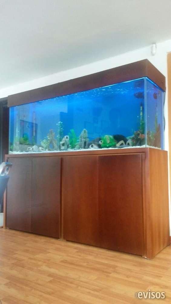 Fabrica de acuarios acuaglass