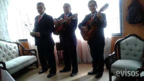 Trio bogota, serenata dia de las madres, musica de cuerda