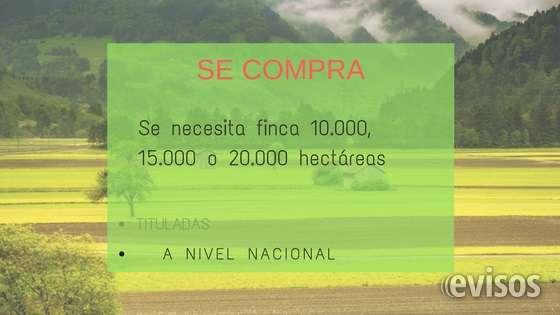 Se necesita finca 10.000, 15.000 o 20.000 hectáreas tituladas a nivel nacional  favor contactarse al 318 445 8351 o al correo .  ¡intermediario abstenerse!