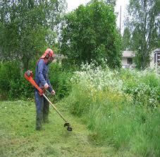 Jardineria y fumigacion