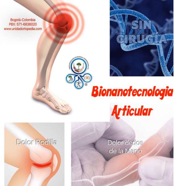 Bionanotecnologia articular colombia